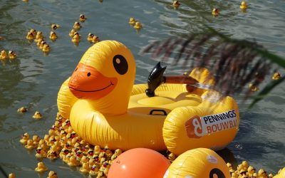 Duckrace 2019